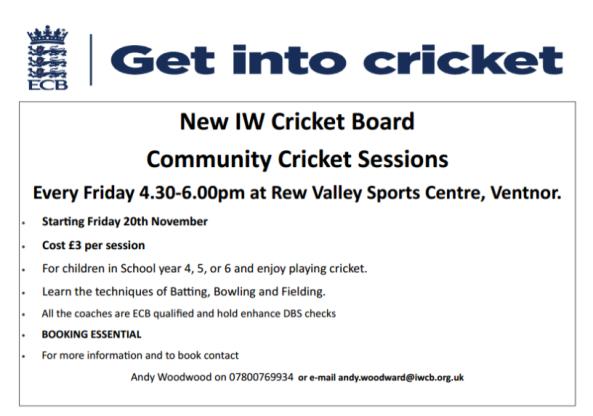 Get into cricket